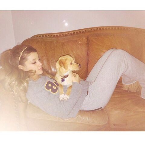 File:Ariana Grande and her pet dog .jpg
