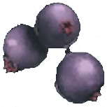 File:Mejoberry.png