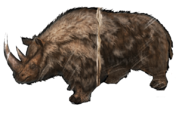 800px-Woolly Rhino 1