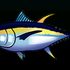 Big Eye Tuna - Rarity: Common, Size: Medium