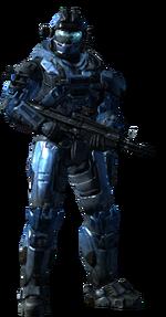 HaloReach-TST
