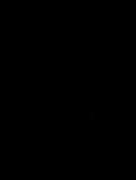 Ottoman Insignia-R