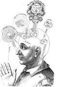 Consciousness study