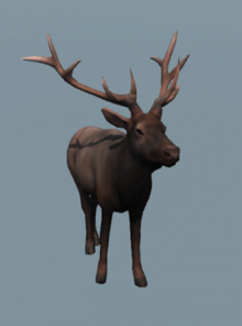 DB Male Elk.png