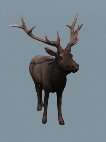 File:DB Male Elk.png