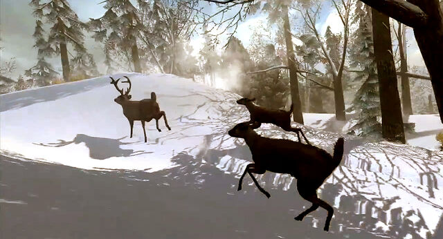 File:Fleeing-deer.jpg