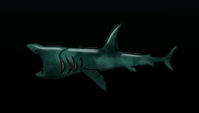 File:BaskingSharkACP.png