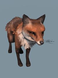 DB Fox.png