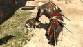 AC4 Edward Dog.png