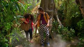 Everglades & Ally-Gators (901)