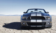 2010GT500Shelbysnarlinggrin