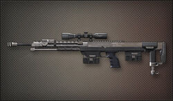 Weapon Sniper DSR-1