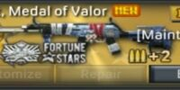 AK47 S.t, Medal of Valor