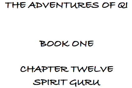 File:Spirit Guru.png