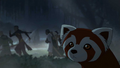 Pabu discovers the Red Lotus.png