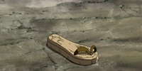 Sandalia de Iroh