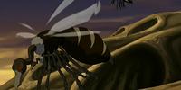 Buzzard wasp