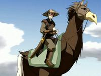 Zuko and ostrich horse