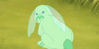Dragonfly bunny spirit