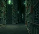 Wan Shi Tong's Library