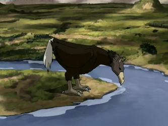Ostrich Horse Latest?cb=20140517112026