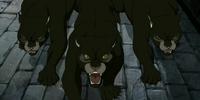 Pygmy puma