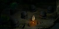 Foggy Swamp Tribe