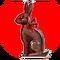 Chocolate Bunny