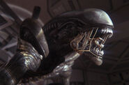 Alien-Isolation-6