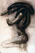 Normal Alien V