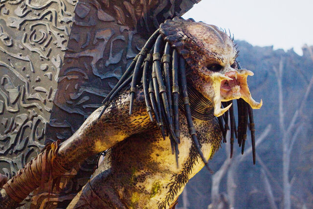 File:Classic Predator Tied Up.jpg
