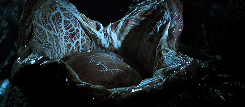 File:Avpbluray416.PNG