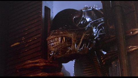 File:Aliens cu 001 1196993015.jpg
