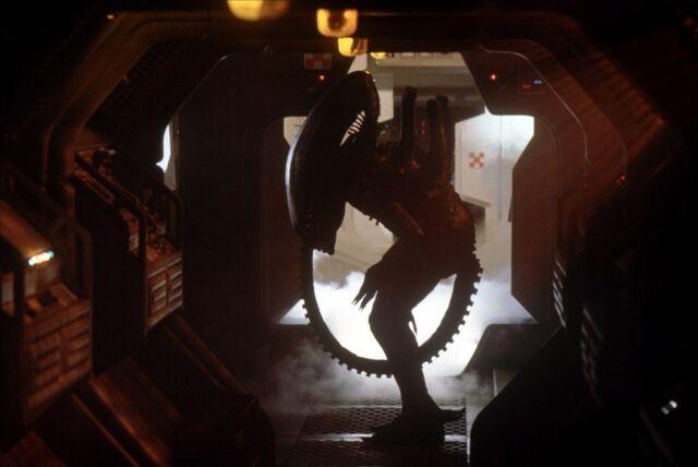 File:Alien-1979 2.jpg