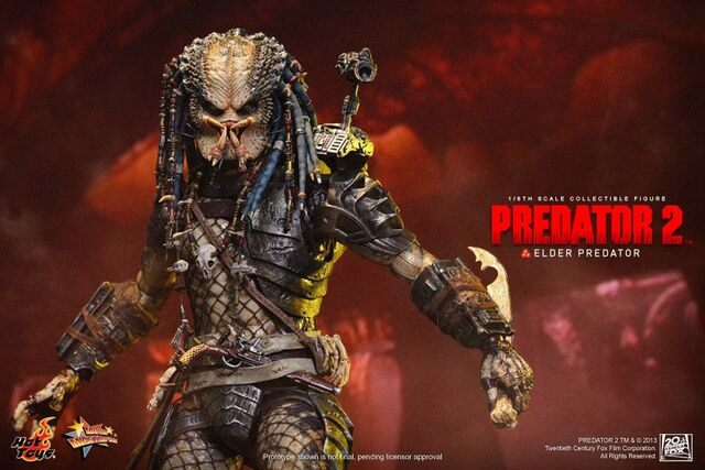 File:Hottoysgreyback.jpg