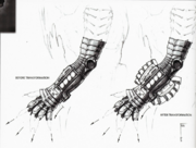Power Punch glove before and after transformation