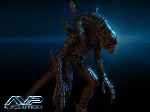 File:Alienwarrior.jpg