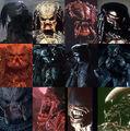Thumbnail for version as of 19:23, September 16, 2012