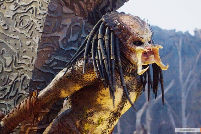 File:Predator-predators-2010-movie-14721714-1200-800.jpg