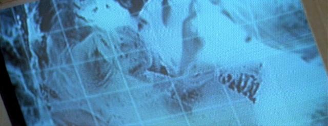 File:Xeno embryo.png