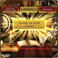 New GUild leader promotion option