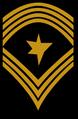 EF rank nco-SgtMaj.png