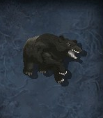 Bearmorph