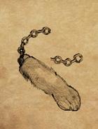 Rabbit's Foot Art