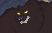Grizzly Bear Wolf Quest