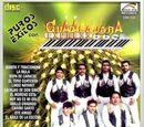 Anexo:Discografía de Banda Guadalajara Express