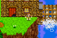 Cliff farm 5
