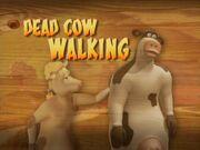 Back at the Barnyard Dead Cow Walking