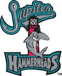 File:Jupiter Hammerheads.jpg