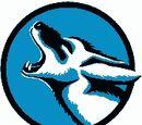 Cal State San Bernardino Coyotes